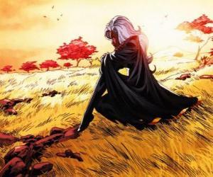 puzzel De super-heldin Storm is een lid van de X-Men, ook bekend als de Zwarte Panter
