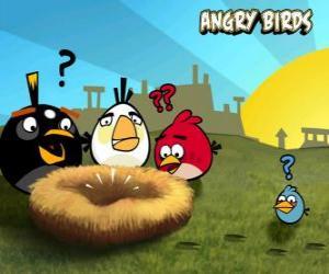 puzzel De vogels ontdekken dat iemand heeft de eieren gestolen uit het nest
