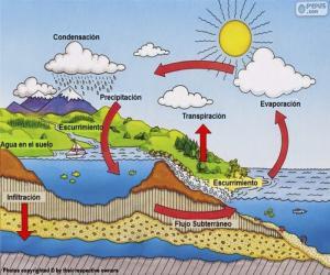puzzel De watercyclus (es)