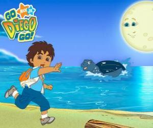 puzzel Diego op het strand en een zeeschildpad in water