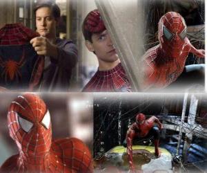 puzzel Diverse afbeeldingen van Spiderman