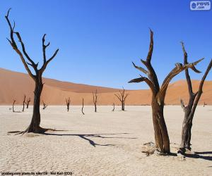 puzzel Dodevlei, Namibië