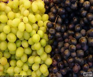 puzzel Druiven
