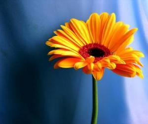 puzzel Een eenvoudige bloem die leuk cadeautje voor je moeder