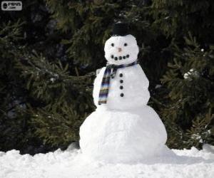 puzzel Een stijlvolle sneeuwpop