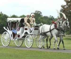 puzzel Elegante paard en vervoer