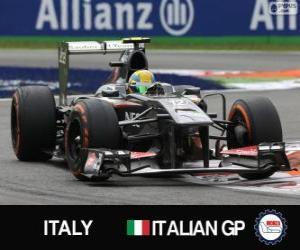 puzzel Esteban Gutiérrez - Sauber - Monza, 2013