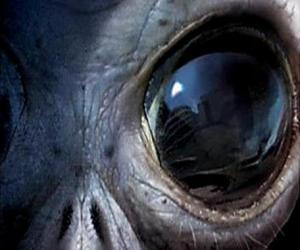 puzzel Eye vreemdeling