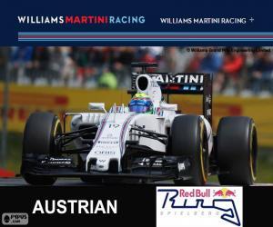 puzzel F. Massa, G.P Oostenrijk 2015