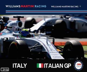 puzzel F. Massa, GP van Italië 2015