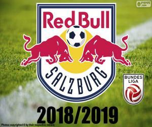 puzzel FC Salzburg, Bundesliga 2019