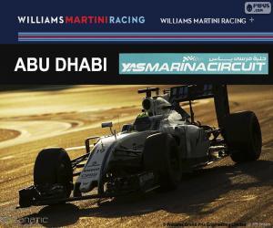 puzzel Felipe Massa, Grand Prix van Abu Dhabi 2016