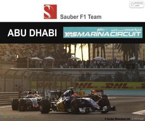 puzzel Felipe Nasr, Grand Prix van Abu Dhabi 2016