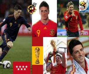 puzzel Fernando Torres (Het maakte ons droom) Spaanse nationale elftal vooruit
