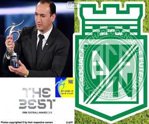 puzzel FIFA Fair Play Award 2016