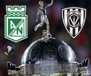 puzzel Finale Copa Libertadores 2016