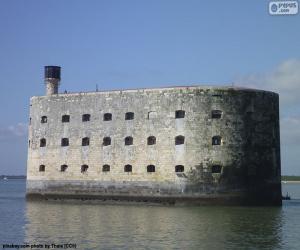 puzzel Fort Boyard, Frankrijk