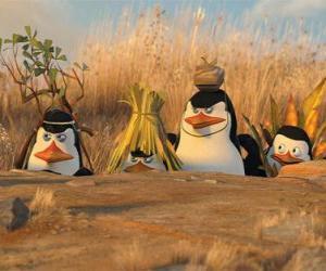 puzzel Gecamoufleerde Penguins