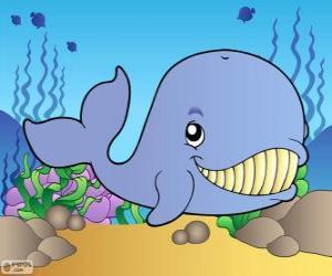 puzzel Glimlachend walvis
