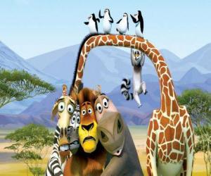 puzzel Gloria de Hippo, Melman de Giraffe, Alex de leeuw, Marty de zebra met andere protagonisten van de avonturen