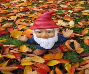 puzzel Gnome of dwerg