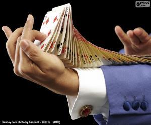 puzzel Goochelaar, kaart truc
