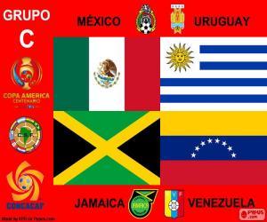 puzzel Groep C, Copa América Centenario