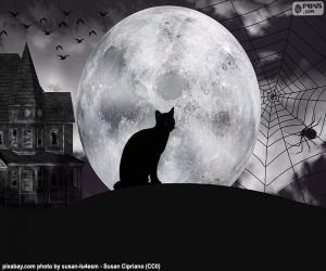puzzel Halloween nacht