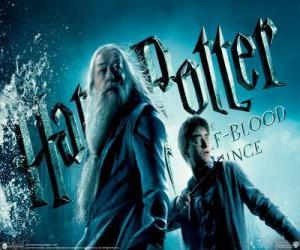 puzzel Harry Potter en de Halfbloed Prins