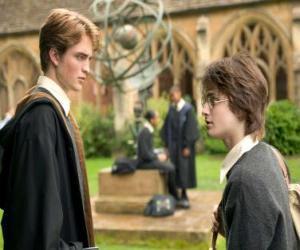 puzzel Harry Potter en zijn vriend Carlo Kannewasser