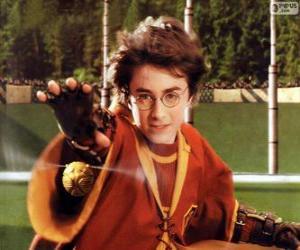 puzzel Harry Potter gooien van een bal