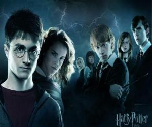 puzzel Harry Potter met zijn vrienden