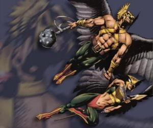 puzzel Hawkman of Hawkgirl