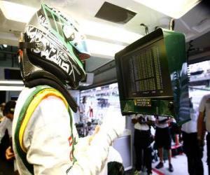 puzzel Heikki Kovalainen - Lotus - Sepang 2010