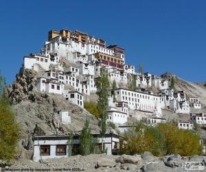 puzzel Hemis klooster, India