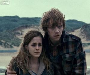 puzzel Hermione Granger en Ron Weasle