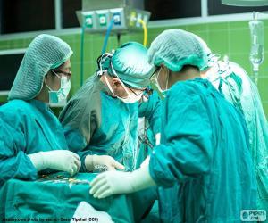 puzzel Het chirurgische team