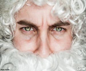 puzzel Het gezicht van de Kerstman