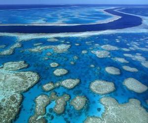 puzzel Het Great Barrier Reef, koraalriffen over de hele wereld grootste. Australië.