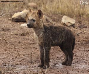 puzzel Het puppy van Hyena