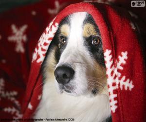 puzzel Hond kerst