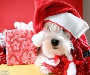 puzzel Hond met een kerstman hoed en zijn gave