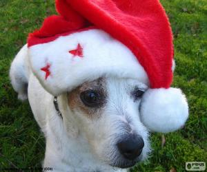 puzzel Hond van Kerstmis
