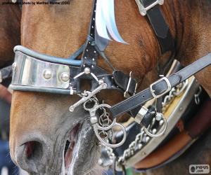 puzzel Hoofdstel van een paard