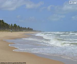 puzzel Imbassai Beach, Brazilië