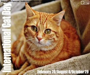 puzzel Internationale Kattendag