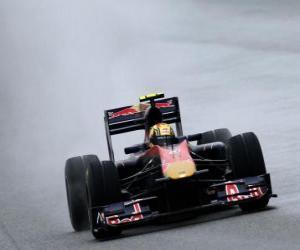 puzzel Jaime Alguersuari - Toro Rosso - Shanghai 2010