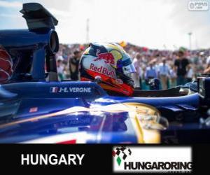 puzzel Jean-Eric Vergne - Toro Rosso - Hungaroring, 2013
