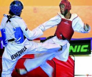 puzzel Karate - Twee karateka oefenen