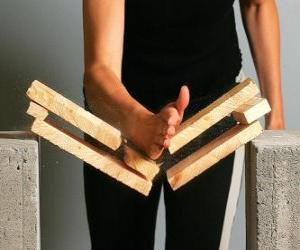 puzzel Karateca het breken van een stuk met een klap met de hand